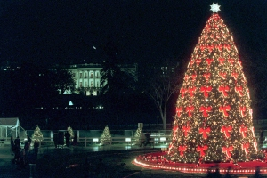 National Christmas Tree Shines Through The Years