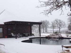 Your Snow Photos - February 27, 2015