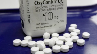 City Sues Drugmaker for Letting OxyContin Flood Black Market