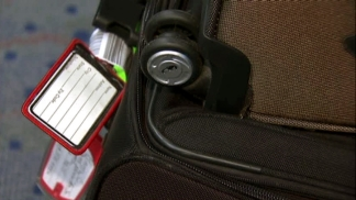 Proposal Would Limit Airline Bag Fees