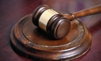 Taxidermist Pleads Guilty in Rhino Case