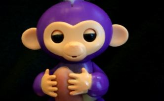 Fake Fingerlings Are Popping Up at Online Stores