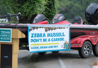More Zebra Mussels Found in Texas Lakes