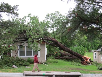 What Steps Should You Take After the Storm?