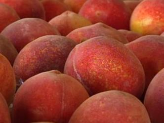 Late Freeze Makes Parker Co. Peaches Hot Commodity