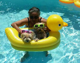 More Dog Days of Summer - July 25, 2016