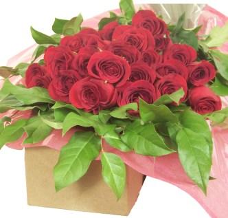 Five Rules: Love in Bloom