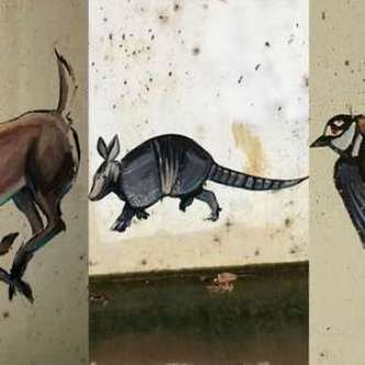 Keller Officials Seek Mystery Artist After Animal Paintings Appear in Tunnel
