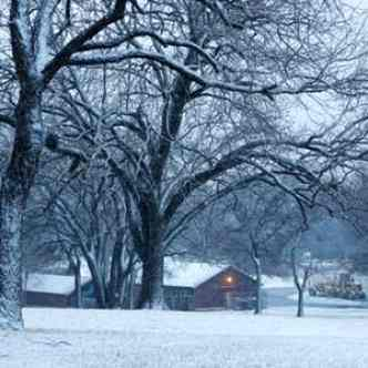 Will Dallas Have a White Christmas?