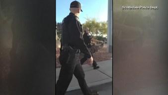 Emu Found Wandering Arizona Neighborhood