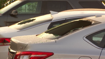 Vehicles Damaged by Hail in Carrollton