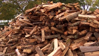 Rugged and Refined: Picking the Right Firewood