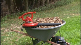 Consumer Reports: Leaf Blowers