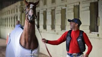 California Chrome Gallops at Belmont