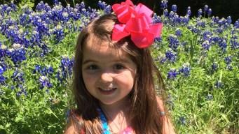 More Bluebonnets in Bloom - April 22, 2016