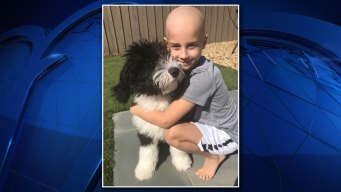 Community Hopes to Save Boy by Joining Bone Marrow Registry