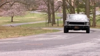 Ford 'Bullitt' Mustang Showcased on National Mall