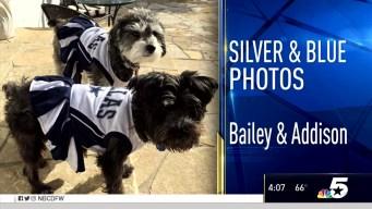 Silver and Blue Photos - December 1, 2016