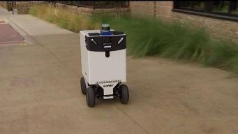Delivery Robots? Dallas Leaders Considering Them
