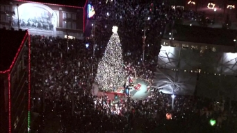 Sundance Square Christmas Tree Shining Bright