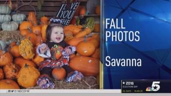 Fall Photos -  October 12, 2016