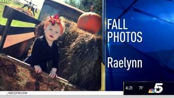 Fall Photos - November 10, 2016