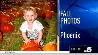 Fall Photos - Nov. 3, 2016