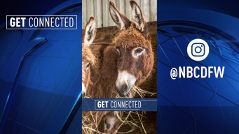 Get Connected: Stories for May 9, 2019