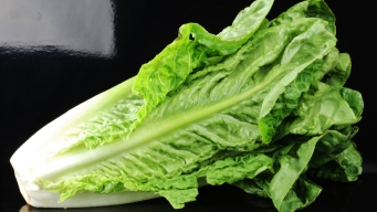 North Texas Business Owners Eliminate Romaine Due to E.Coli Outbreak