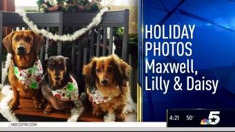 Holiday Photos - December 23. 2016