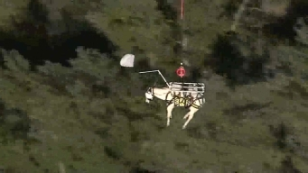 Horse Rescue by Helicopter