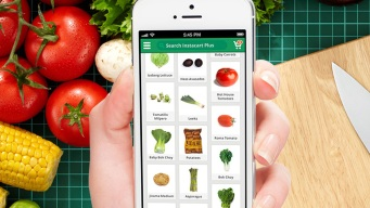 Instacart Service Charge: Do You Know What You're Paying For