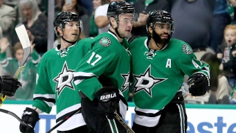 Dallas Stars Review: One Third the Way Through