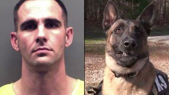 Man Arrested in Fatal Shooting of Police K9