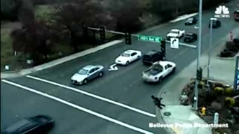 Man Runs Into Traffic, Hit by Car