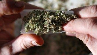 A Look at Marijuana Laws Around the U.S.
