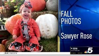 More Fall Photos - October 17, 2016