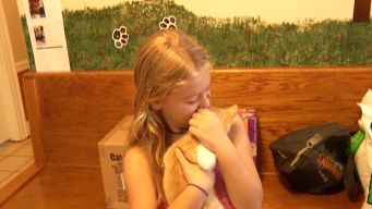 Birthday Girl Asks For Pet Donations Instead of Gifts