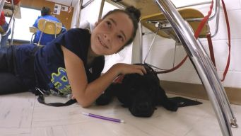 Service Dog Gives Autistic Girl New Voice