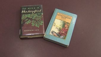 Virgina School Pulls Books From Shelves