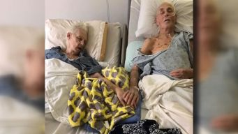 Together 'Til The End: Couple Dies Holding Hands