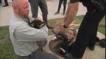 Officers Rescue Tiny Dog from Storm Drain