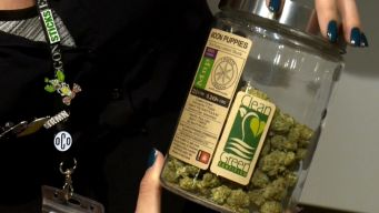 Cannabis and Liquor Demand Expected for Total Solar Eclipse