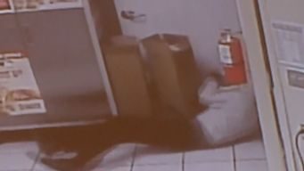 Accused Robber Slips, Falls on Camera