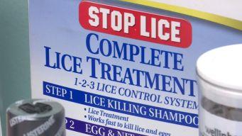Super Lice Hits Texas Schools
