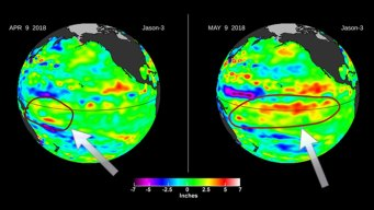 Potential Signs of El Niño by Early Winter?