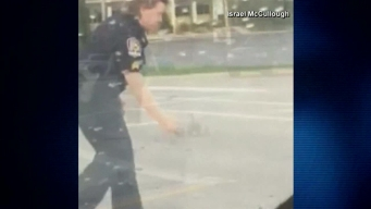 Kentucky Officer Helps Ducks Cross Road