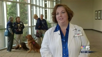 Therapy Dogs Visit Mansfield Hospital Patients