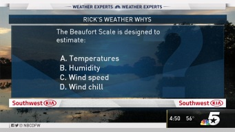 Weather Quiz: Beaufort Scale