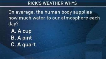 Weather Quiz: How Much Water Does the Human Body Supply to the Atmosphere Each Day?